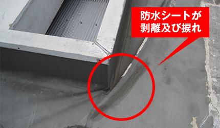防水シートの伸縮による剥離