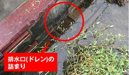排水口(ドレン)の 詰まり